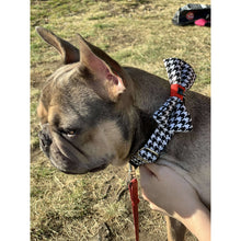 Load image into Gallery viewer, Houndstooth Pet Collar