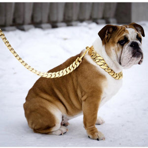 14K PVD Gold Plate Kilo Cuban Link | Leash