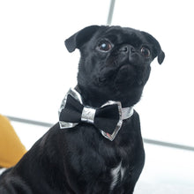Load image into Gallery viewer, Suede and Silver Dog Collar & Bow Tie Set