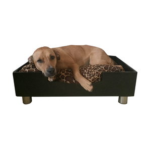 Royal Modern Cozy Pet Bed Low to the Ground Dog or Cat Bed