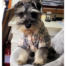 Load image into Gallery viewer, Furberry Checkered Button Up | Dog Clothing