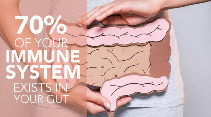 The Gut-Immune System Connection