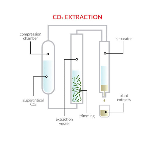 CBD wax can be created using different extraction methods. Some argue CO2 extraction is the cleanest. What is CBD Wax? Visit our blog to learn more at Sauce Warehouse!