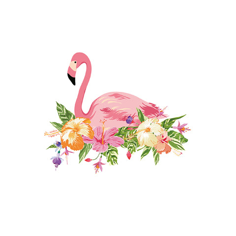 Colorful Flamingo