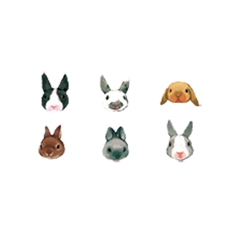 Colored Rabbit Bunny Set