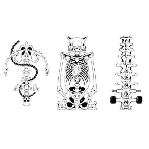 Skeleton Anchor Spine Design