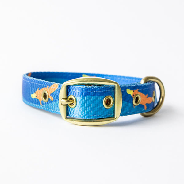 Anipal Piper The Platypus Dog Collar