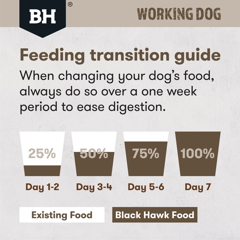 Black Hawk Work Dog Lamb/beef 20kg