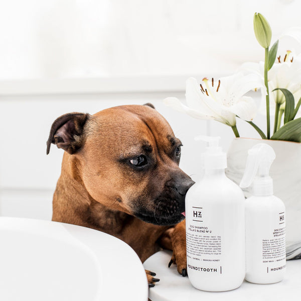 Stella's Blend No.2 Dog Shampoo - Nourishing & Itch Relief
