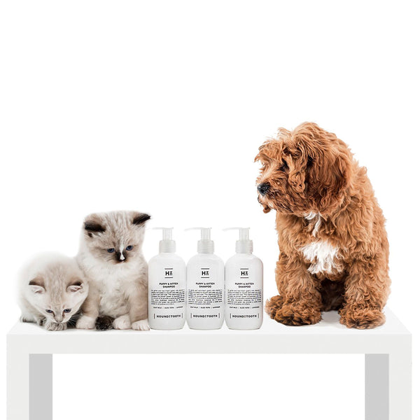 Puppy & Kitten Shampoo - Gentle & Low Irritant