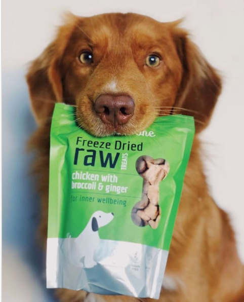 Freeze Dried Raw Dog Treats: Chicken with Broccoli and Ginger