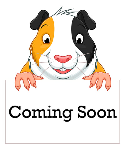 Guinea Pig holding a Coming Soon Sign in front of it
