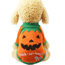 Load image into Gallery viewer, Pet Halloween Costume - E4PetLife
