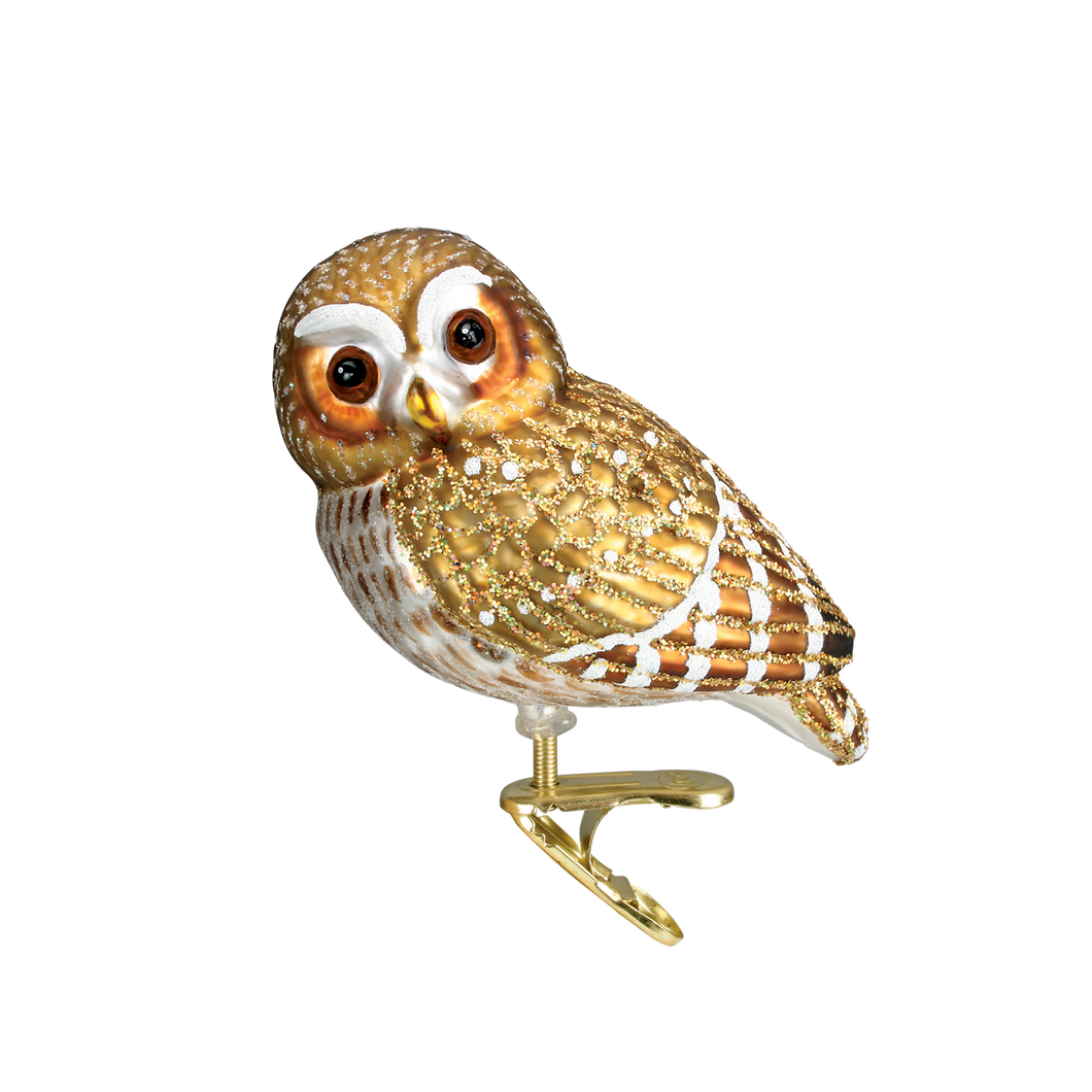 Pygmy Owl Christmas Ornament