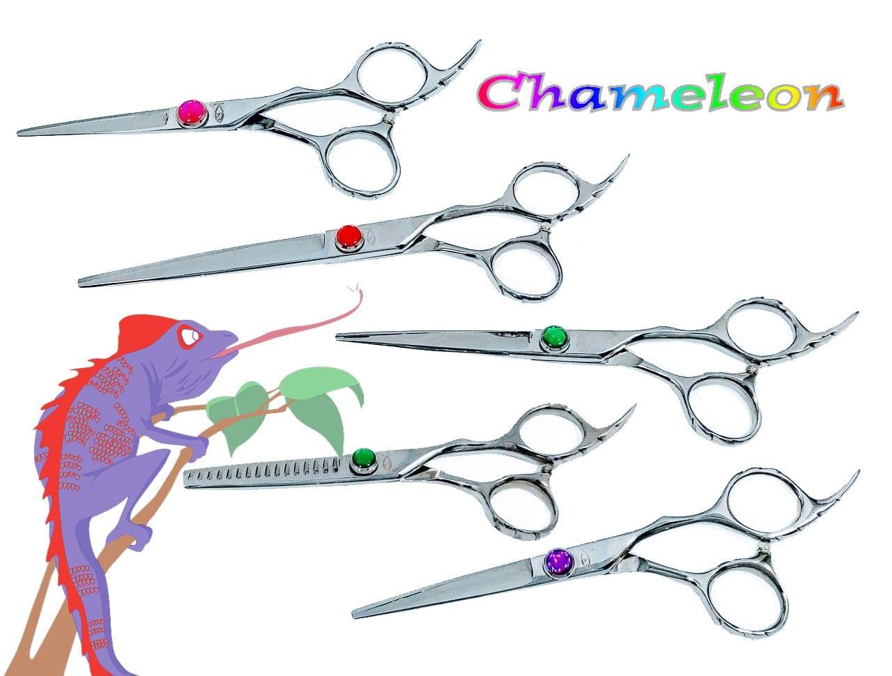 Chameleon Shears, 4 lengths