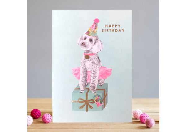 birthday card poodle dog party - quirky coo, cards, gifts, dundee, perth, aberdeen