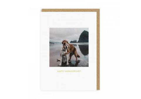 Anniversary Beach Dogs Card