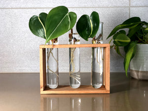 Three Well Propagation Station