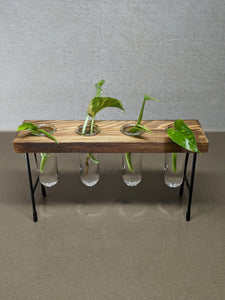 Four Well Propagation Table Stand