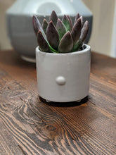 Load image into Gallery viewer, Rabbit Ceramic Planter Pot