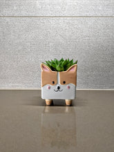 Load image into Gallery viewer, Corgi Ceramic Planter Pot | Succulent and Clipping Pot