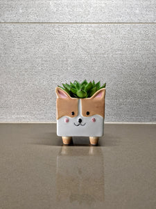 Corgi Ceramic Planter Pot | Succulent and Clipping Pot