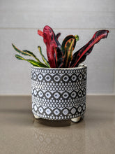 Load image into Gallery viewer, Swirl and Geometric Design Plant Flower Pot