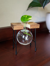 Load image into Gallery viewer, Wooden Plant Stand with Glass Bulb Vase | Propagation Station