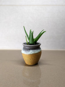 Gorgeous Hand Glazed and Textured Planter Pot - 3""