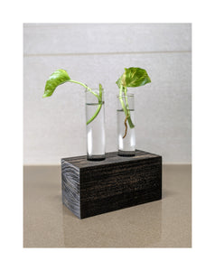 Handmade Propagation Stand, Various Sizes, With Test Tubes for Plant Clippings, Vials Included