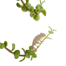 Load image into Gallery viewer, Plant Animal Decorations - Cute Animals to Add Joy to your Houseplants - Gift Idea!