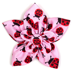 Ladybugs Flower Slider