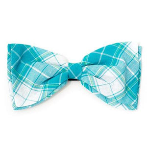 Madras Plaid Turquoise/White Bow Tie