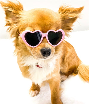 Tiny Dog Heart Sunglasses in Light Pink