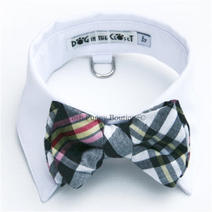 White Shirt Dog Collar with Black & White Madras Plaid Bow Tie