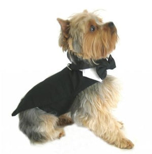 Black Dog Tuxedo With Tails, Bow Tie and Collar