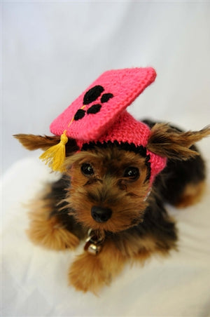 Hot Pink Knit Graduation Cap for Dogs