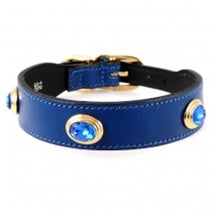 The Royal Collection Dog Collar in Cobalt Blue