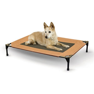 Pet Cot in Chocolate