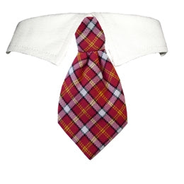 Richie Shirt Tie Collar