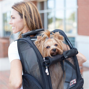 Roll Around Travel Dog Carrier Backpack in Black
