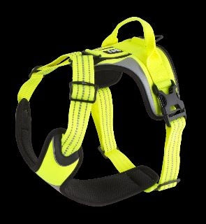 Active Dazzle Harness - Hi-Visibility Yellow