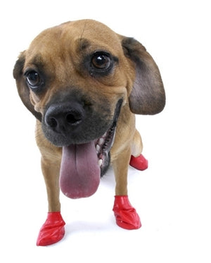 Disposable/Reusable Dog Boots in Small Red