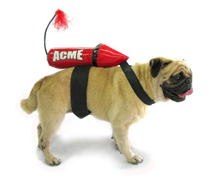 Acme Rocket Costume