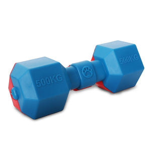 Dumbbell Floating Chew And Fetch Dog Toy