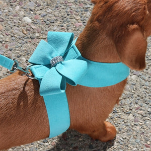 Susan Lanci Nouveau Bow Tinkie Harnesses in Many Colors