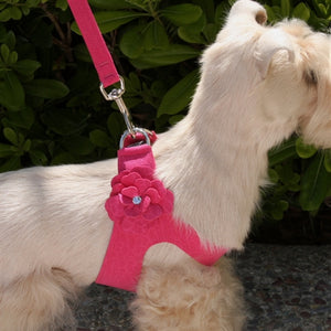 Susan Lanci Tinkie's Garden Simple Step-In Harnesses - Many Colors