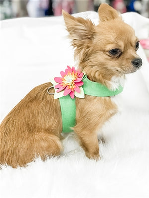 Susan Lanci Island Flower Collection Tinkie Harness-Many Colors
