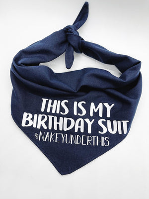 """Birthday Suit"" Dog Bandana"
