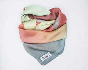 Ombré Scarf Collection: Lulu